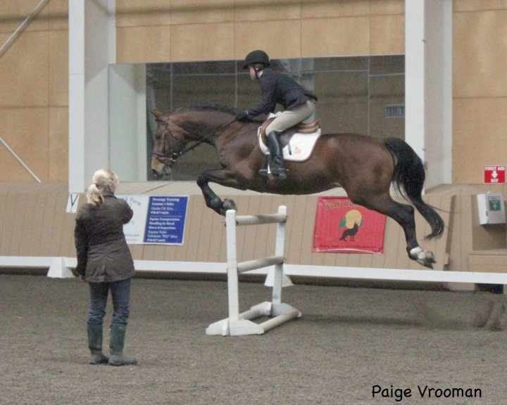 Navarone (Olympic Jus de Pomme x Armstrong)